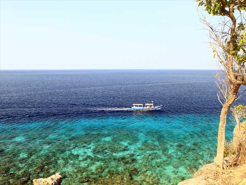 Все Бали сафари 14 дней